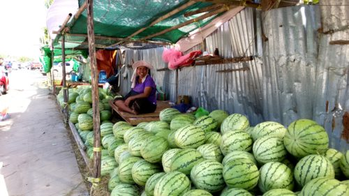 Young women sits under her stand where she sells a large number of watermelons.