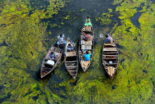 Four boats sitting in a marsh, holding students as they read from there books during a school lesson.