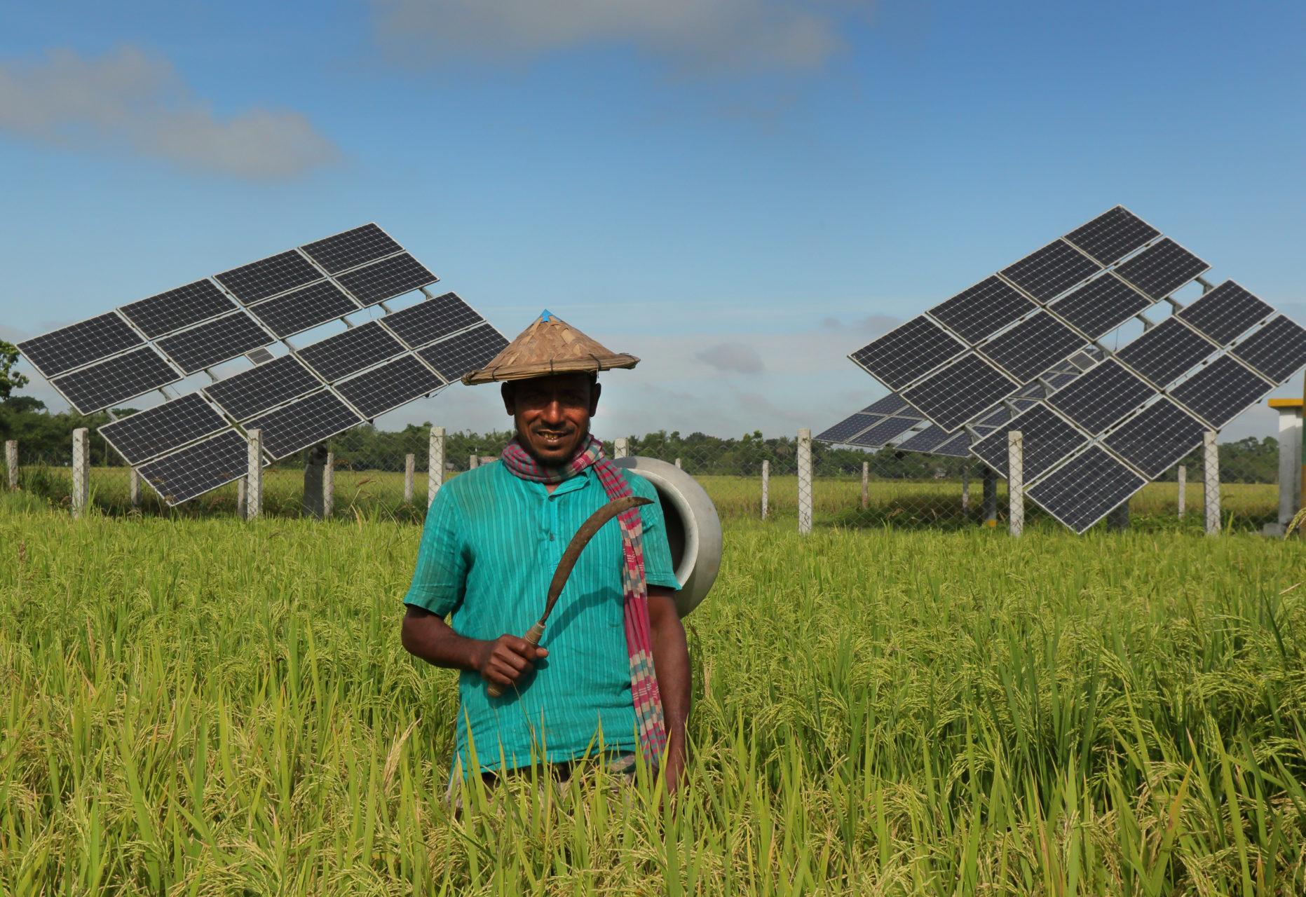 A man stands in a field in front of solar panels