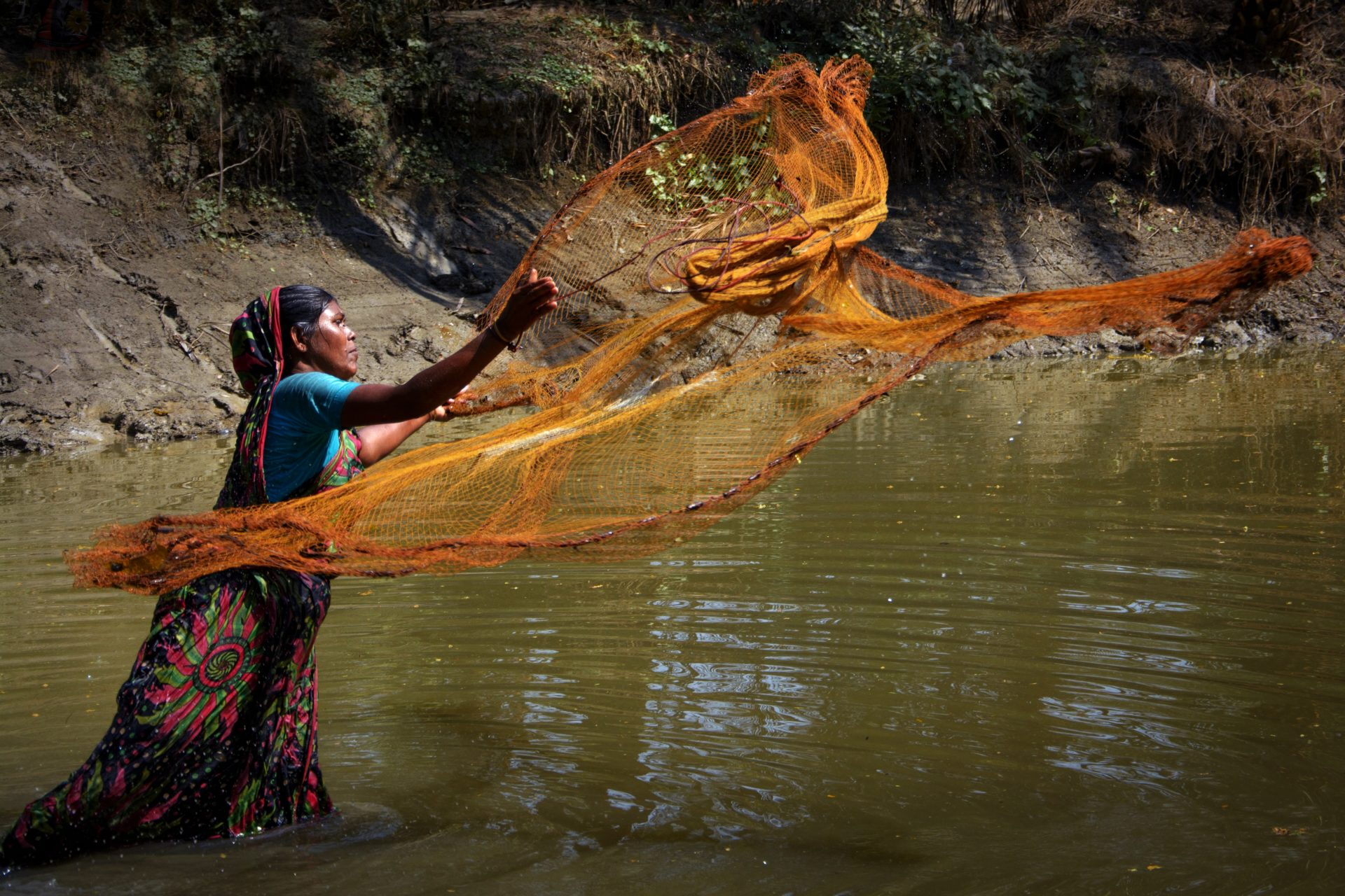 woman casts net into a green water river