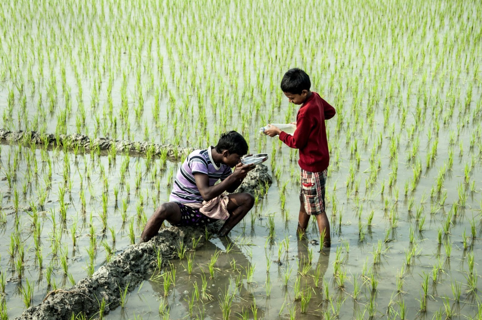 Little boy standing in the marsh, pours water from a bottle into a vessel that a young man drinks from as he sit on a log..