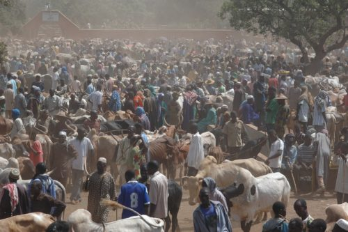 In Burkina Faso, a large group ranchers and herders gather in an open space.
