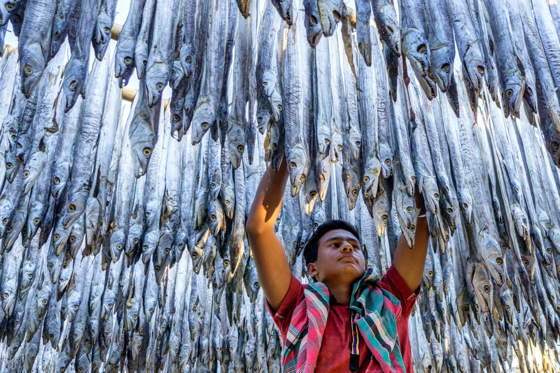 man hanging fish